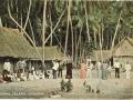 Postcard, Coral Island Oceania